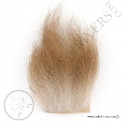 ours-brun-poils-sur-peau-poils-marron-cl