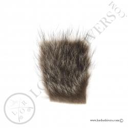 raton-laveur-poils-sur-peau-lords-of-riv