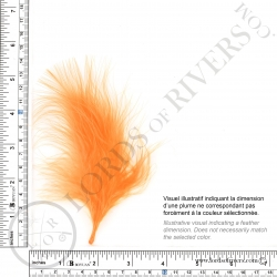 Marabou feathers Standard Lords of Rivers - 20 feathers - Illus. 1