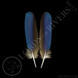 ara-bleu-paire-de-plumes-d-ailes-type-1-