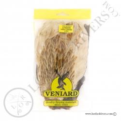 4 mixed colour Indian Hen Capes pack veniard