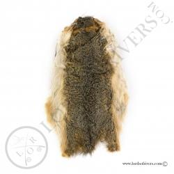 Fox Squirrel skin Veniard