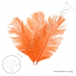 Ostrich feathers 3.94/5.90 in. Lords of Rivers - Orange