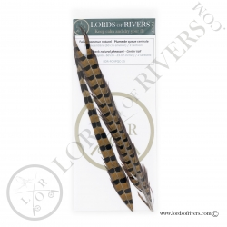 Ringneck natural pheasant center tail 2 sections Lords of Rivers - Natural
