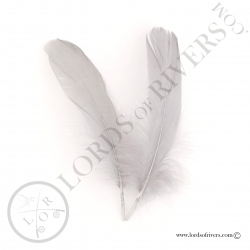 Plumes d'aile d'oie (Quills) Lords of Rivers - 2 plumes gris naturel