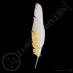 cacatoes-blanc-plume-d-ailes-type-1-lord