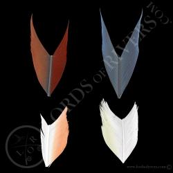 tryme-perroquets-4-sections-de-5-cm-de-a