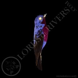 purple-breasted-cotinga-full-skin-lords-