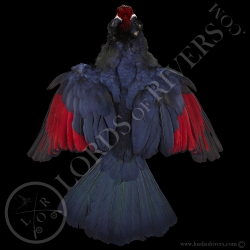 violet-turaco-full-skin-lords-of-rivers
