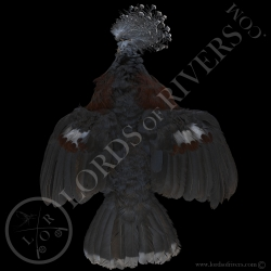 victoria-crowned-pigeon-full-skin-lords-