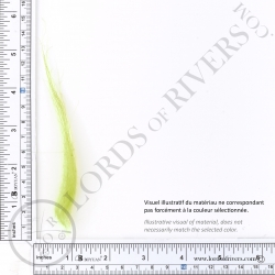 Foxy-Tails Nayat Hair Pelt Patch Brigth Green illus. 1